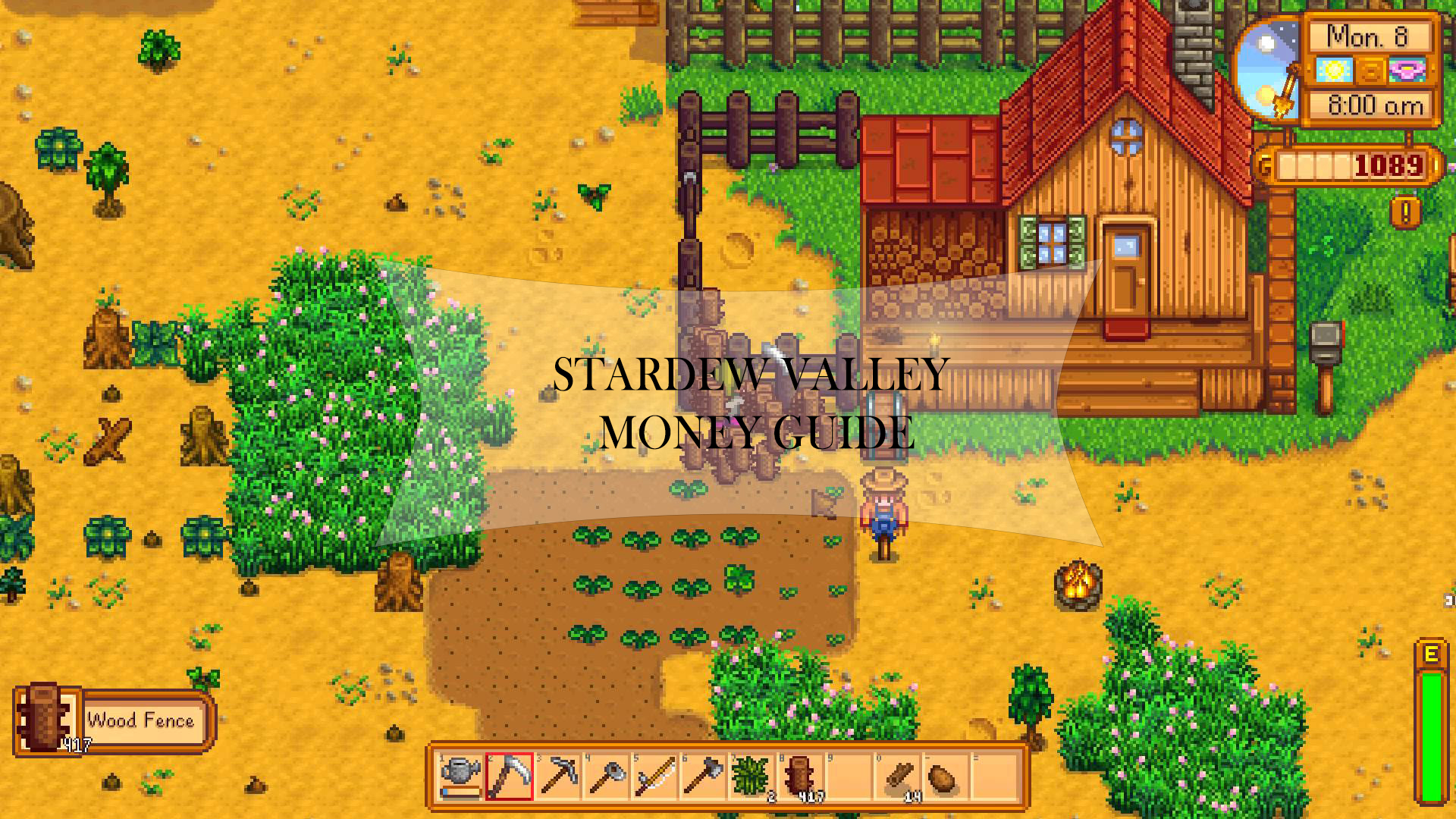 Stardew valley money guide