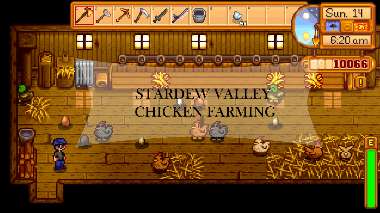 Chicken farming in stardew valley how to tips guide stardew valley stardew valley chicken farming guide forumfinder Images