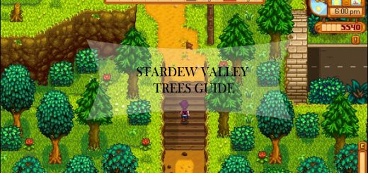 Stardew Valley Farming Guide Setup Layouts And Design