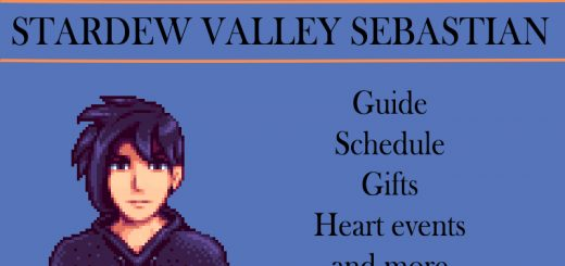 stardew valley sebastian