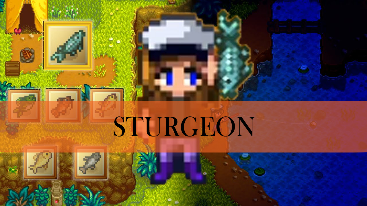 Stardew Valley Sturgeon Tips How To Catch Location And More