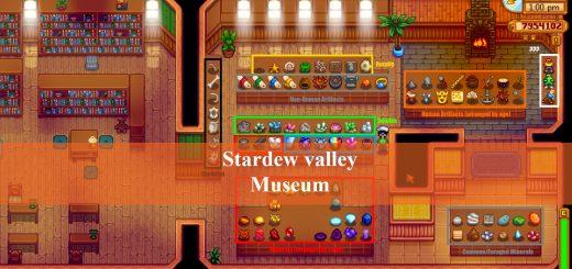 stardew valley Museum